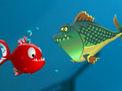Akvaryum Balığı Krizi