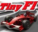 Minik Formula 1 Arabaları