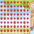 Tatlı Meyveleri Patlat